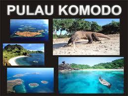 pulaukomodo