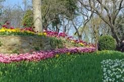 istanbul_tulip_festival_lale (22)