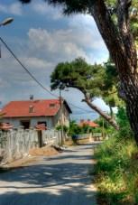 istanbul_buyukada_island_2011_06_21-6