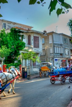 istanbul_buyukada_ozgur_ozkok_20110816-32