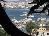 istanbul_suleymaniye_eleka_rugam_rebane-2