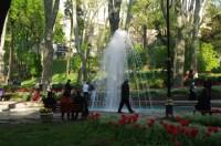 istanbul_tulip_lale_festival_ozgurozkok (82)