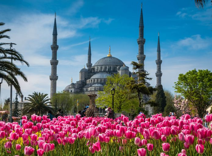 Blue Mosque - Istanbul Tour Studio – Istanbul Guide