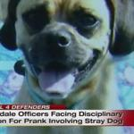 Michigan Cops in Big Trouble Over Stray Dog Prank