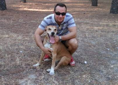 ebola patient's dog to be euthanized in spain