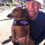 Dachshund Thought to Be Killed in Mudslide Found Alive and Well
