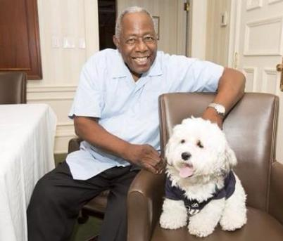 hank the dog and hank aaron