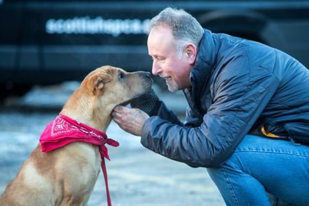 dog abandoned at scotland train station with new owner