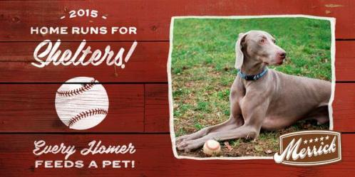 homeruns for shelters merrick pet care