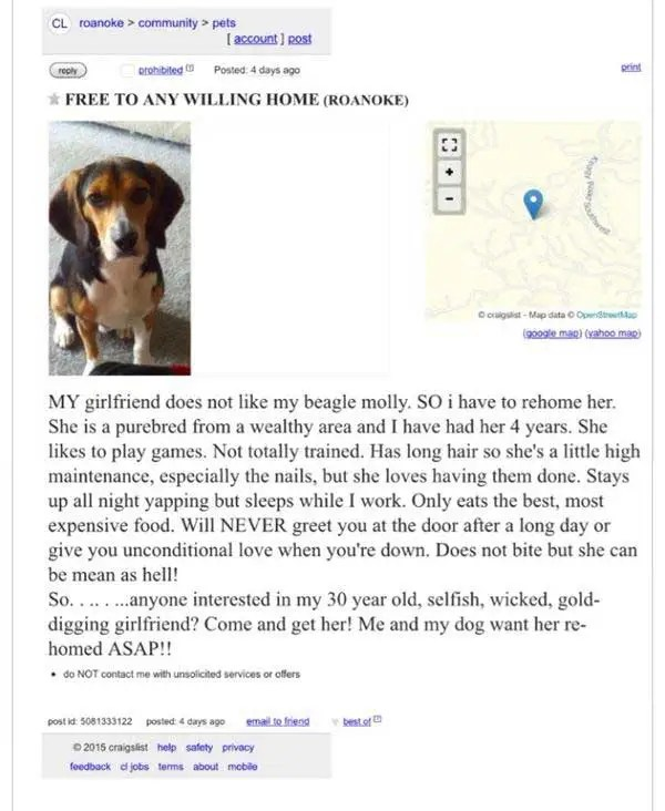 Craigslist Roanoke ad rehome girlfriend