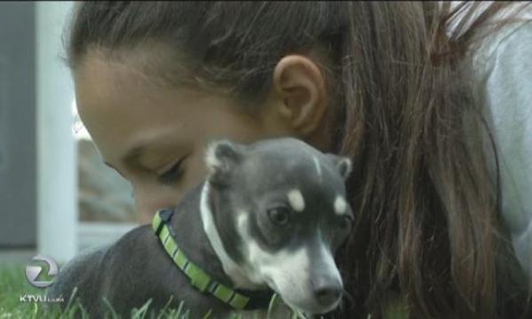 burned dog adopted by burn victim