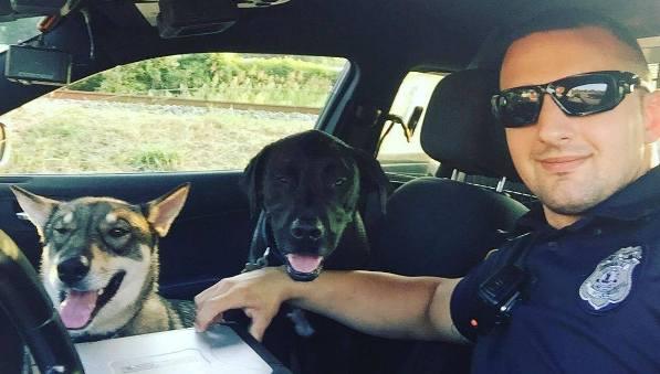 Roanoke Officer Kulish rescues 2 stray dogs