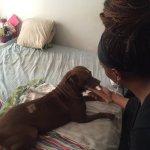 Off-Duty Cop at Dog Park Shoots Deaf Woman's 'Aggressive' Service Dog