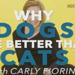 Why Carly Fiorina Has Probably Lost All Her Supporters with Cats