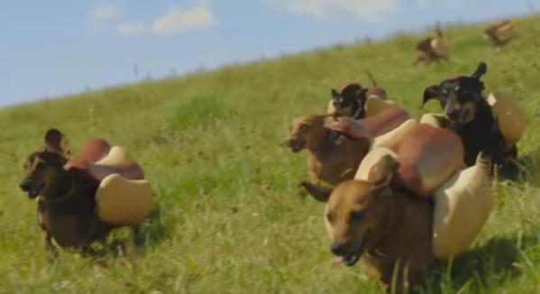 Heinz Weiner Stampede Super Bowl 50 commercial