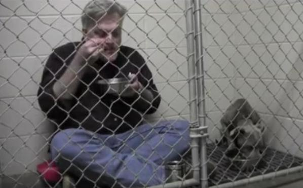 veterinarian joins scared dog in cage