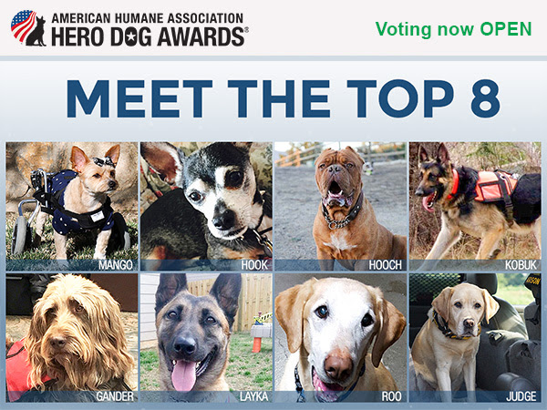 2016 Hero Dog Awards finalists