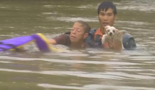 woman and dog rescued from Louisiana flood