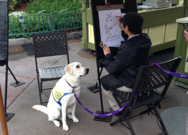 service dog poses for caricature at Disneyland