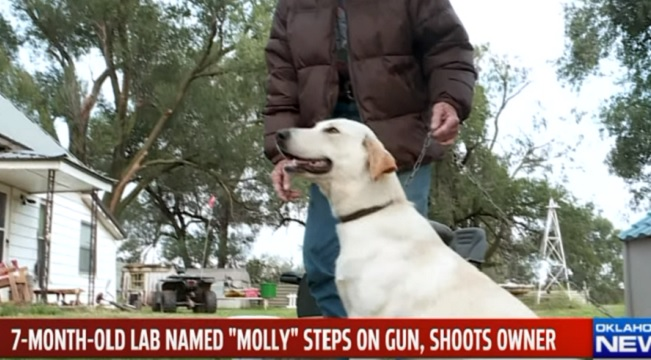 puppy steps on gun and shoots Oklahoma woman