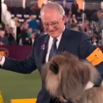 Mop Wins Best in Show at Westminster Dog Show