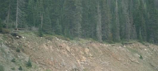 Тонкий слой почвы (и деревья) сформировался на осадочных породах на Среднем Западе США как свидетельство того, что эти осадочные породы появились некоторое время тому назад.