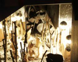 István Seidel,Künstler als Gestalter der Welt,Schaufenster,Installtion