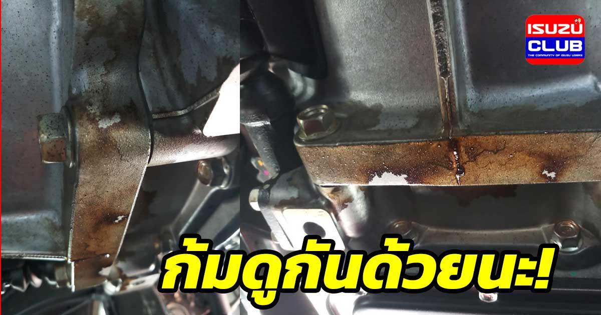 gear oil seal open