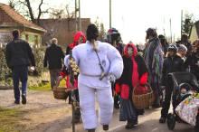 2016 február, tikkverőzés a szomszédos Mohán