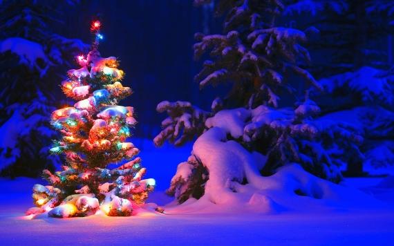 Snowy Night theme für Windows Windows 7, 8 und 10