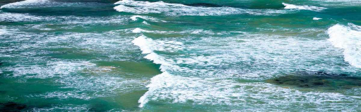 SAP en del av global miljösatsning – målet är renare hav före 2030 1