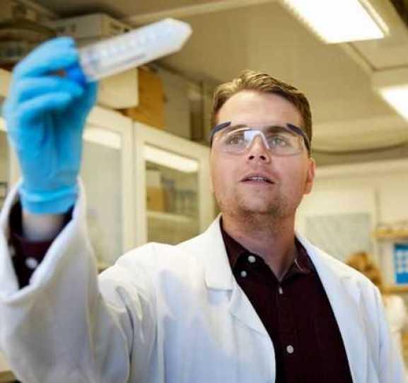Miljövänliga tätningsmedel undersöks i nya studier 1