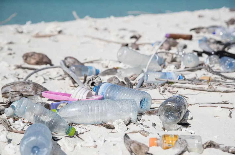 Experter till EU: Undvik biologiskt nedbrytbar plast i naturen, utom i specialfall