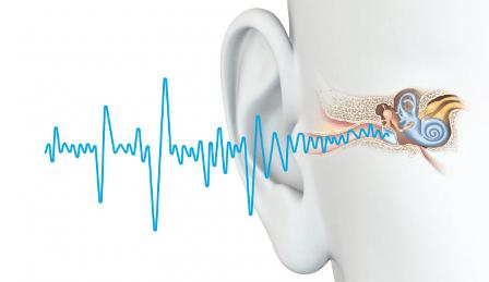 Sensoris registrering av Antinitus i Nya Zeeland är genomförd