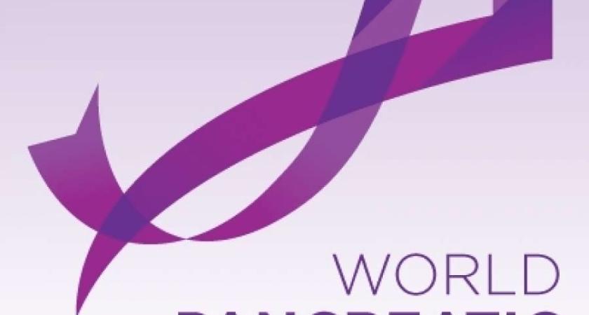 Immunovia sponsrar symposium inom primärvårdsutbildning på Fenway Park tillägnat World Pancreatic Cancer Day