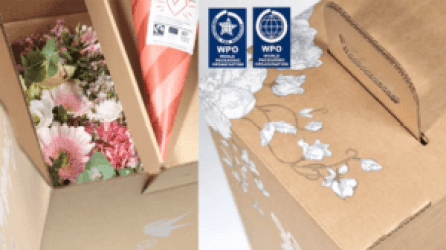 WorldStar till Smurfit Kappa för innovativ e-handelsförpackning 1