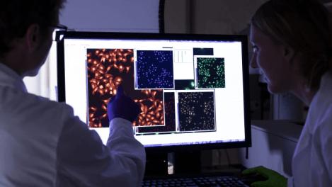 Metod för upptäckt av antivirala läkemedel