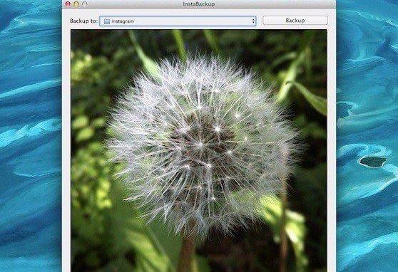 Скачиваем фотографии из Instagram на компьютер с Mac OS X ...