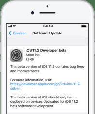 iOS-11.2-beta-1-update-prompt-417×500