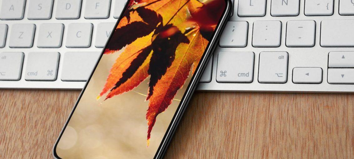 leaves-autumn-wallpaper-mockup-splash-1376×1032