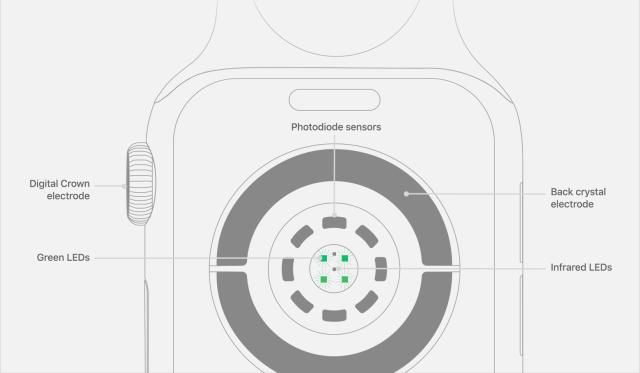 Apple-watch-series-4-heart-sensors