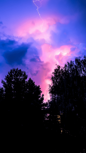 OLED-wallpaper-idownloadblog-trees-lightning-clouds