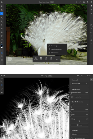 Adobe introducerer ny Photoshop-funktion til iPad 1