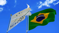EU kan undergrave Parisaftalen og Amazonas med ny handelsaftale