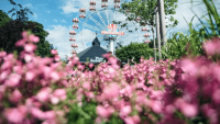 Tivoli Friheden byder endnu engang velkommen til Danmarks største Blomsterfestival