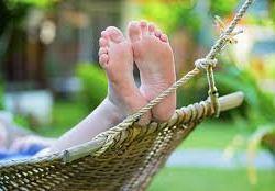 Sommartips – några experter ger tips