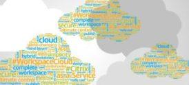 Malux effektiviserar med Citrix Cloud Workspace 1