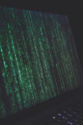 Pirater frodas i en värld besatt av streamingtjänster 1