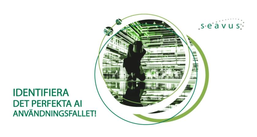 AI seminarium i Stockholm – Identifiera det perfekta AI användningsfallet!