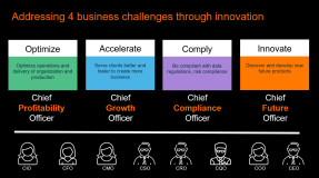 Co-innovation – Accelererad innovation genom delad erfarenhet 2